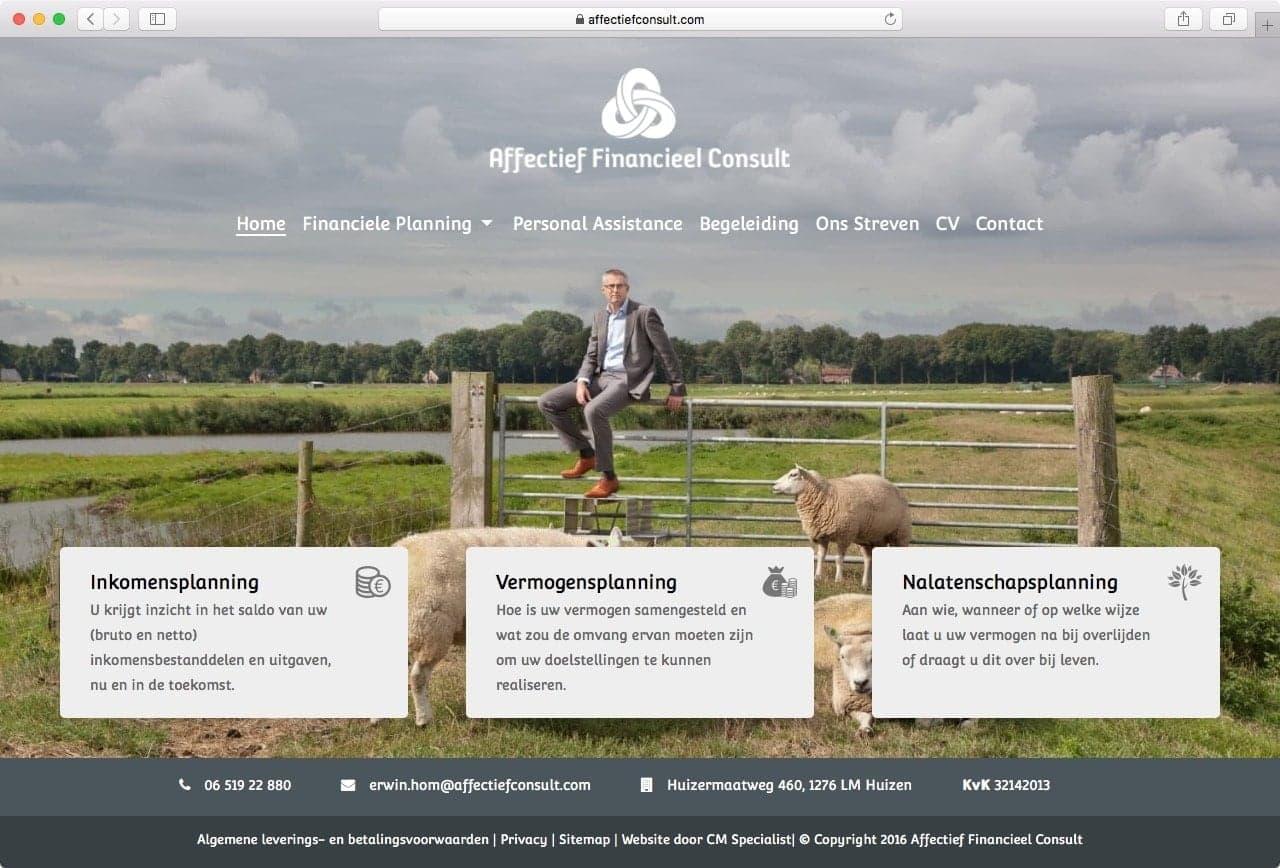 Affectief Financieel Consult