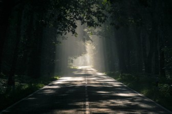 The 2020 road
